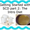 Getting Started with Specific Carbohydrate Diet - The Intro Diet