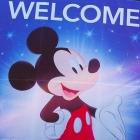 SCD Tip: Go to Disneyland!