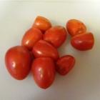 SCD Recipe: Garlic and Onion Tomato Sauce