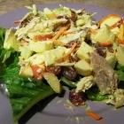 SCD Recipe: Chicken Waldorf Salad